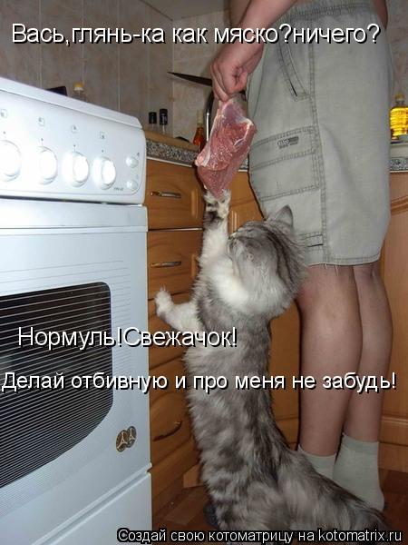Котоматрица: Вась,глянь-ка как мяско?ничего? Нормуль!Свежачок! Делай отбивную и про меня не забудь!