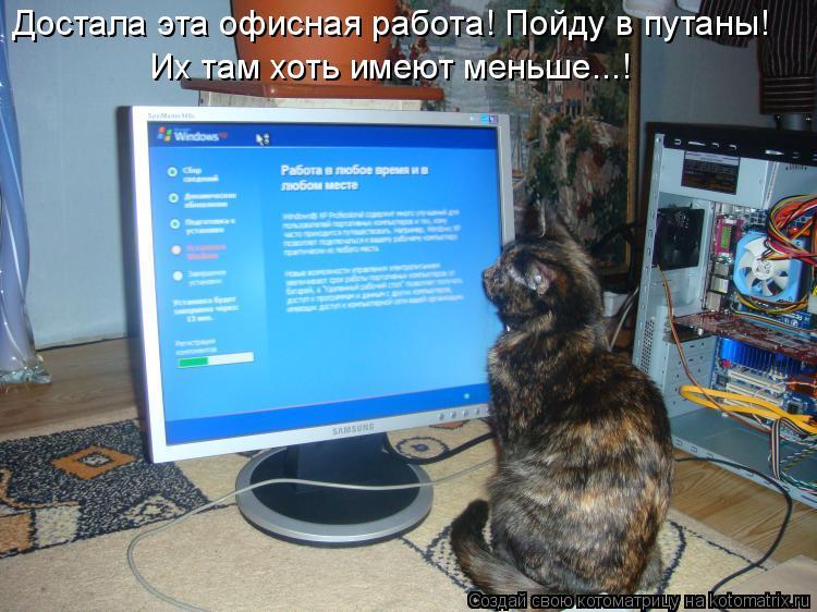 Котоматрица: Достала эта офисная работа! Пойду в путаны! Их там хоть имеют меньше...!