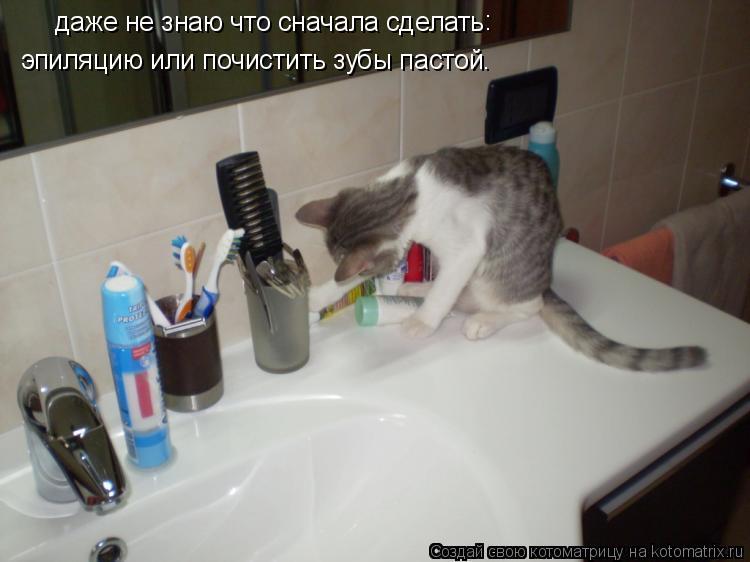 Котоматрица: даже не знаю что сначала сделать эпиляцию или почистить зубы пастой. :
