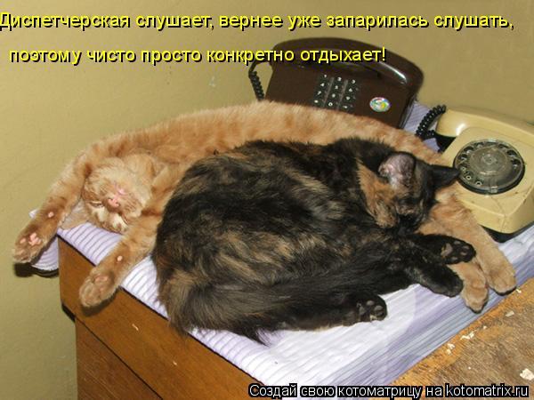 Котоматрица: Диспетчерская слушает, вернее уже запарилась слушать, поэтому чисто просто конкретно отдыхает!
