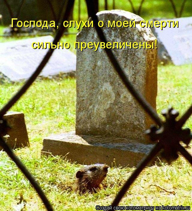 http://kotomatrix.ru/images/lolz/2008/09/18/VQ.jpg
