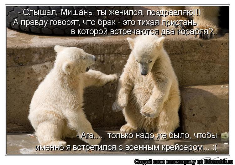 Котоматрица: - Слышал, Мишань, ты женился, поздравляю!!! А правду говорят, что брак - это тихая пристань,  в которой встречаются два корабля?.. - Ага..... только