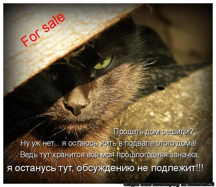 Котоматрица: For sale Продать дом решили? Ну уж нет... я остаюсь жить в подвале этого дома! Ведь тут хранится вся моя прошлогодняя заначка, я останусь тут, обсу