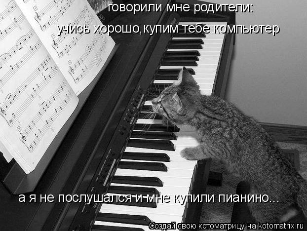 Котоматрица: говорили мне родители: учись хорошо,купим тебе компьютер а я не послушался и мне купили пианино...