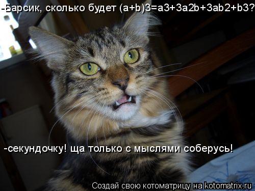 Котоматрица: -секундочку! ща только с мыслями соберусь! -Барсик, сколько будет (a+b)3=a3+3a2b+3ab2+b3?
