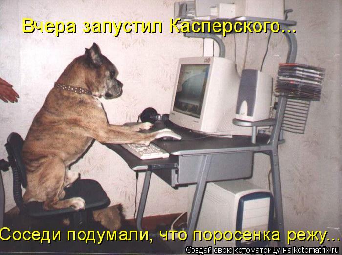 Котоматрица: Вчера запустил Касперского... Соседи подумали, что поросенка режу...