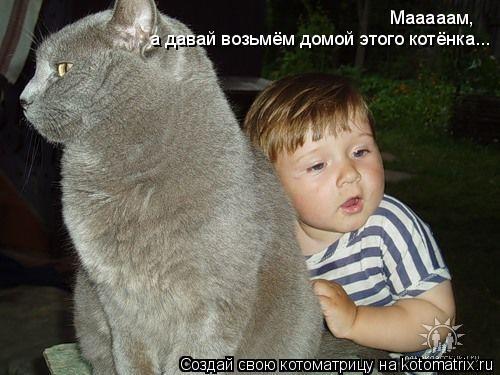 Котоматрица: Мааааам, а давай возьмём домой этого котёнка...