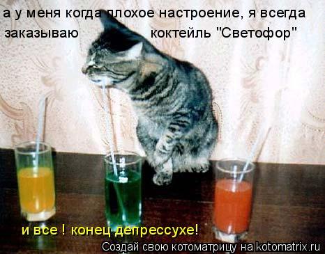 """Котоматрица: а у меня когда плохое настроение, я всегда заказываю  коктейль """"Светофор"""" и все ! конец депрессухе!"""