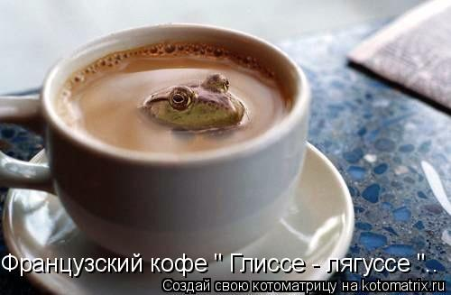 "Котоматрица: Французский кофе "" Глиссе - лягуссе "".."