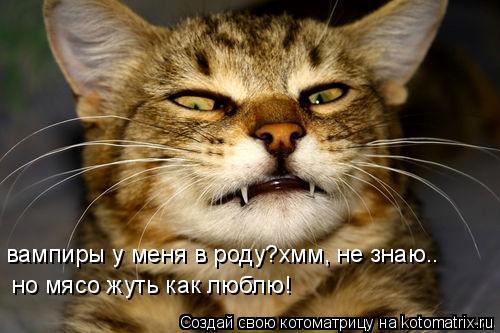 Котоматрица: вампиры у меня в роду?хмм, не знаю.. но мясо жуть как люблю!