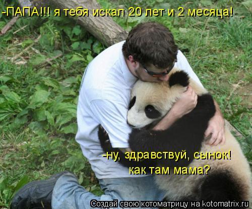 Котоматрица: -ПАПА!!! я тебя искал 20 лет и 2 месяца! -ну, здравствуй, сынок! как там мама?