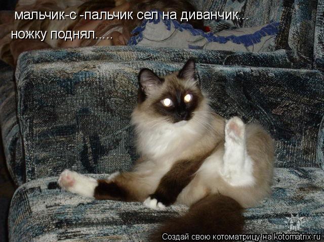 Котоматрица: мальчик-с -пальчик сел на диванчик... ножку поднял.....