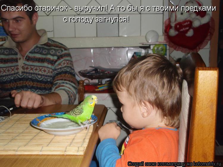 Котоматрица: Спасибо старичок - выручил! А то бы я с твоими предками с голоду загнулся!