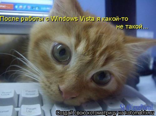 Котоматрица: После работы с Windows Vista я какой-то  не такой...