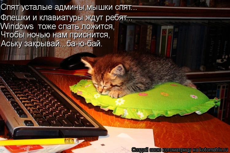Котоматрица: Спят усталые админы,мышки спят... Флешки и клавиатуры ждут ребят... Windows  тоже спать ложится, Чтобы ночью нам приснится, Аську закрывай...ба-ю-б