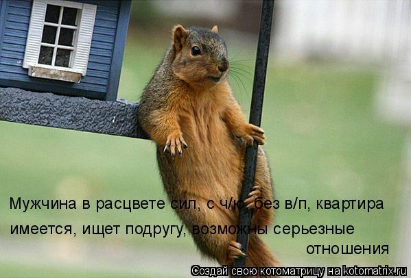 Котоматрица: Мужчина в расцвете сил, с ч/ю, без в/п, квартира  имеется, ищет подругу, возможны серьезные отношения