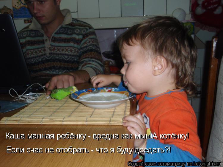 Котоматрица: Если счас не отобрать - что я буду доедать?! Каша манная ребёнку - вредна как мышА котёнку!