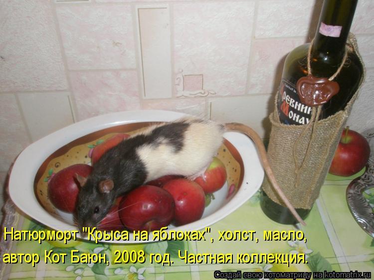 "Котоматрица: Натюрморт ""Крыса на яблоках"", холст, масло, автор Кот Баюн, 2008 год. Частная коллекция."
