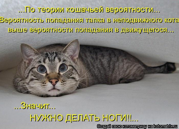 Котоматрица: ...По теории кошачьей вероятности... Вероятность попадания тапка в неподвижного кота выше вероятности попадания в движущегося... ...Значит... Н