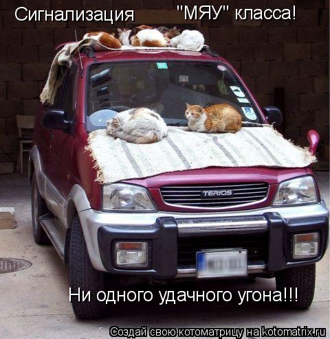 "Котоматрица: Сигнализация ""МЯУ"" класса! Ни одного удачного угона!!!"