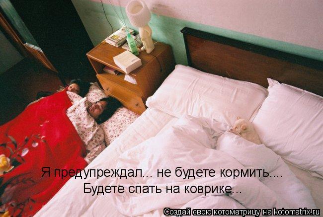 Котоматрица: Я предупреждал... не будете кормить.... Будете спать на коврике...