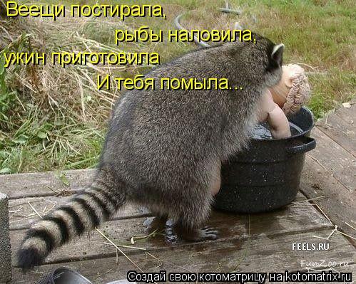 Котоматрица: Веещи постирала, рыбы наловила, ужин приготовила И тебя помыла...