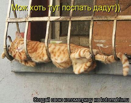 Котоматрица: Мож хоть тут поспать дадут))