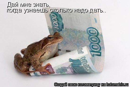 Котоматрица: Дай мне знать,   когда узнаешь сколько надо дать..