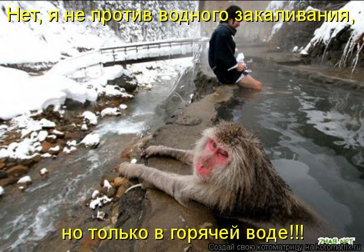 Котоматрица: Нет, я не против водного закаливания, но только в горячей воде!!!