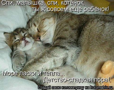 Котоматрица: Спи, малышка, спи, котёнок, ты ж совсем ещё ребёнок! Море ласки и тепла... Детство-сладкая пора!