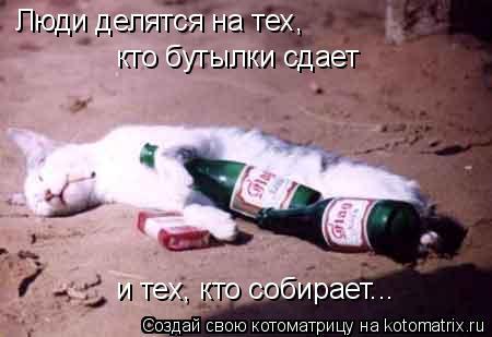 Котоматрица: Люди делятся на тех,  кто бутылки сдает и тех, кто собирает...