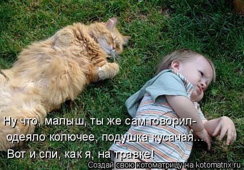 Котоматрица: Ну что, малыш, ты же сам говорил- одеяло колючее, подушка кусачая... Вот и спи, как я, на травке!