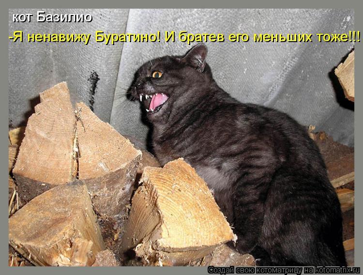 Котоматрица: кот Базилио -Я ненавижу Буратино! И братев его меньших тоже!!!
