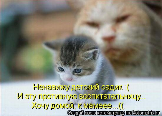Котоматрица: Ненавижу детский садик :( И эту противную воспитательницу... Хочу домой, к мамеее...((