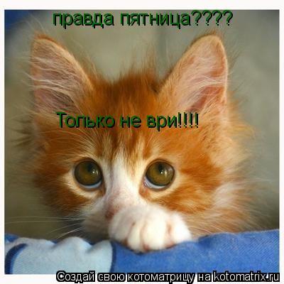 http://kotomatrix.ru/images/lolz/2008/09/26/ve.jpg