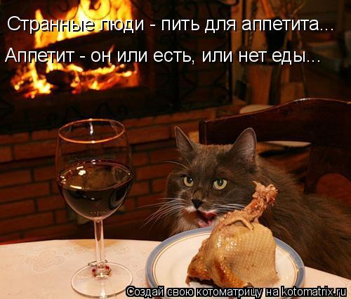 Котоматрица: Странные люди - пить для аппетита... Аппетит - он или есть, или нет еды...