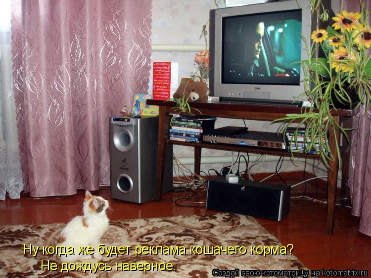 Котоматрица: Ну когда же будет реклама кошачего корма? Не дождусь наверное.
