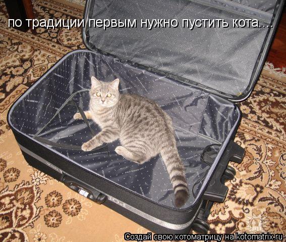 Котоматрица: по традиции первым нужно пустить кота....