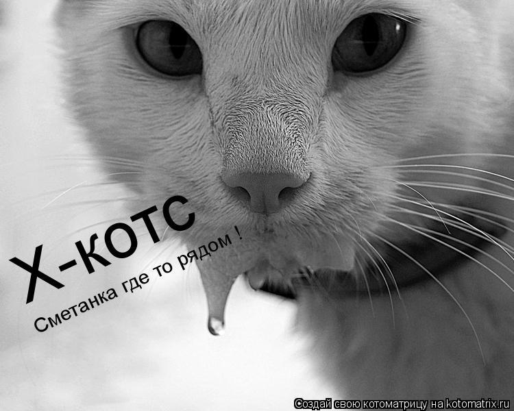 Котоматрица: Х-котс Х-котс Сметанка где то рядом !