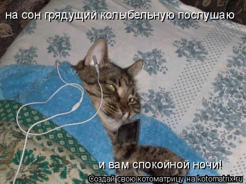 Котоматрица: на сон грядущий колыбельную послушаю и вам спокойной ночи!