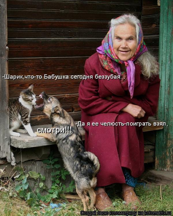 Котоматрица: смотри!!! -Шарик,что-то Бабушка сегодня беззубая... -Да я ее челюсть-поиграть взял,