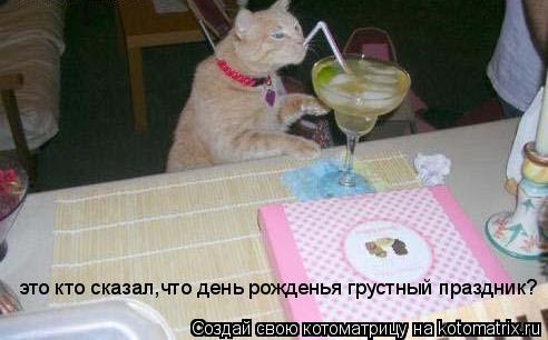 Котоматрица: это кто сказал,что день рожденья грустный праздник?