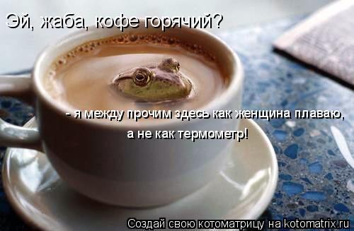 Котоматрица: Эй, жаба, кофе горячий? - я между прочим здесь как женщина плаваю,  а не как термометр!