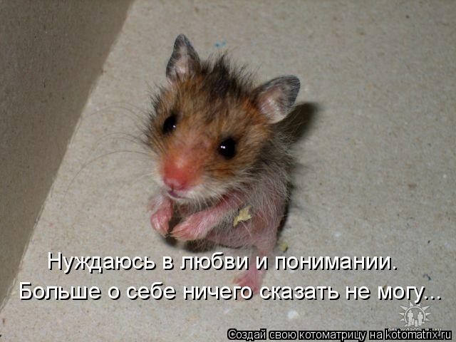 http://kotomatrix.ru/images/lolz/2008/09/30/OT.jpg