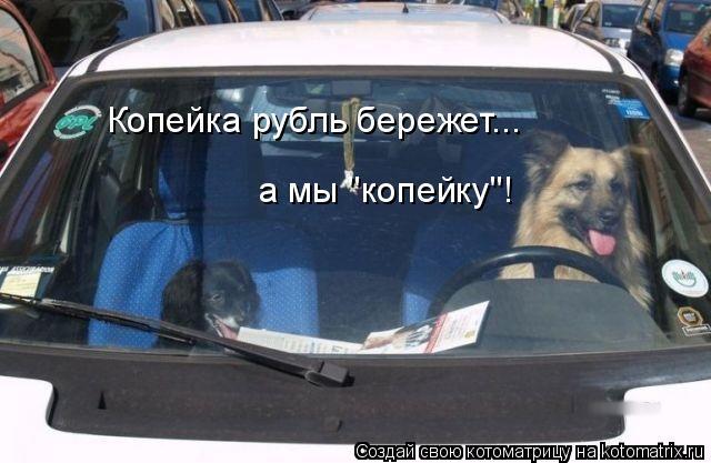 "Котоматрица: Копейка рубль бережет... а мы ""копейку""!"