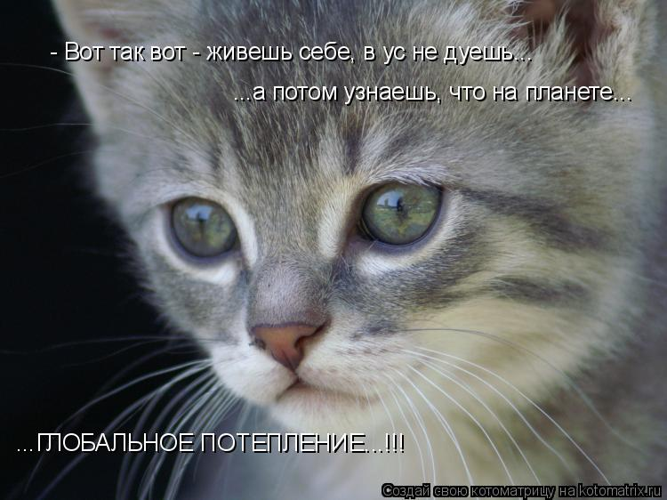 Котоматрица: - Вот так вот - живешь себе, в ус не дуешь... ...а потом узнаешь, что на планете... ...ГЛОБАЛЬНОЕ ПОТЕПЛЕНИЕ...!!!