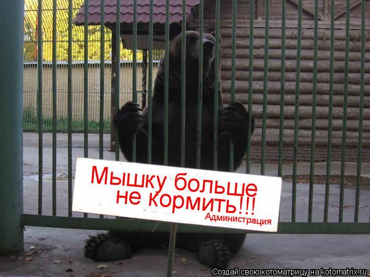 Котоматрица: Мышку больше  не кормить!!! Администрация