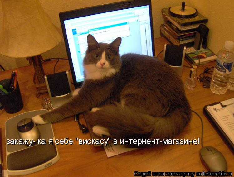 "Котоматрица: закажу- ка я себе ""вискасу"" в интернент-магазине!"