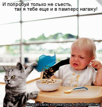 Котоматрица: И попробуй только не съесть, так я тебе еще и в памперс нагажу!