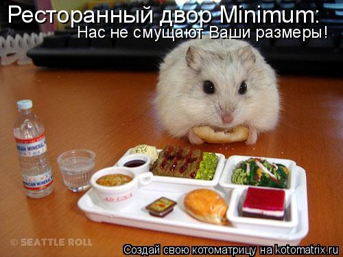 Котоматрица: Ресторанный двор Minimum: Нас не смущают Ваши размеры!
